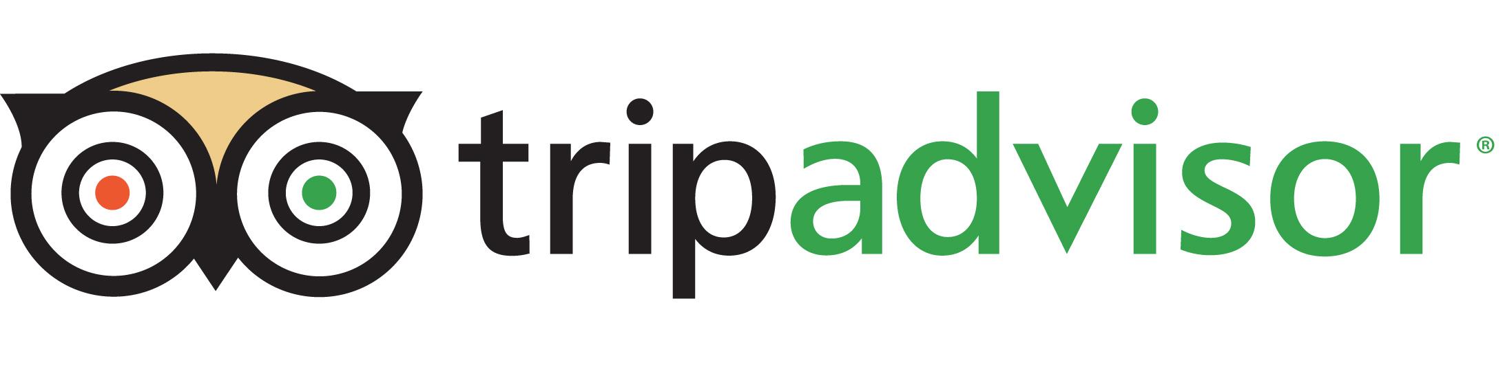 tripadvisor logo owl design