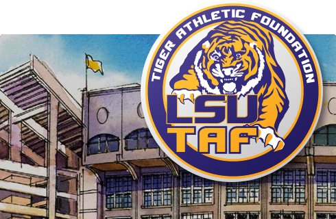 Preservation of Tiger Stadium